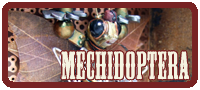 Mechidoptera moth Mechtorian sculpture by Doktor A.